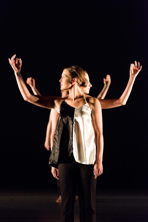 photo-cursus-cours-danse-moderne-adultes-albi-tarn