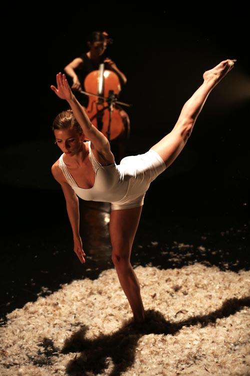 photo-cursus-danse-centre-choregraphique-albi-tarn